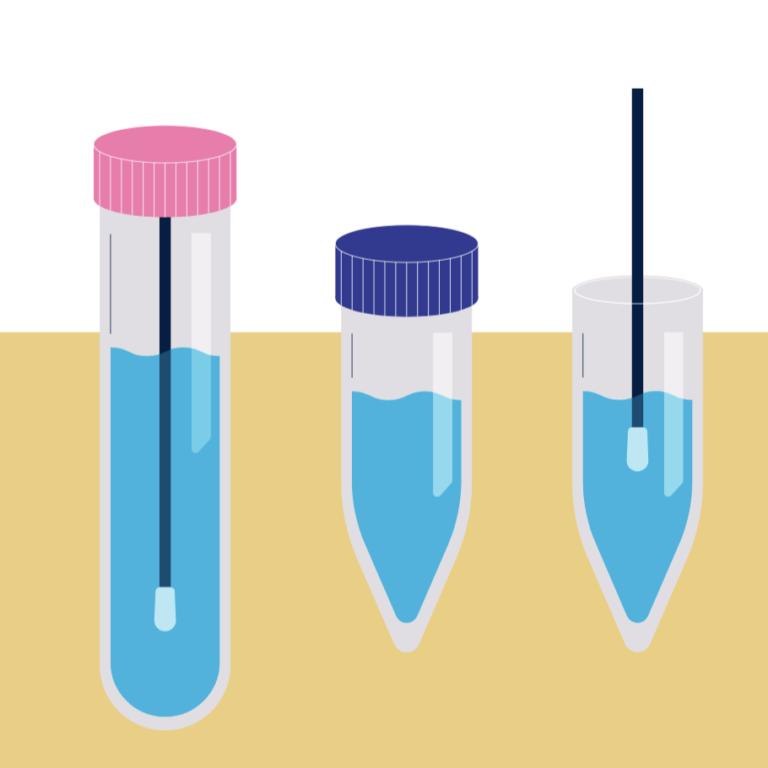 Mobiles PCR - Step 2